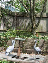 Picture of metal cranes and verdigris bird bath in front of raised crab apple and ivy-covered fence