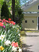 Picture of spring flowers bordering the driveway